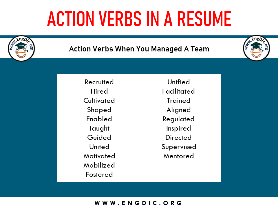 action verb when you manage a team