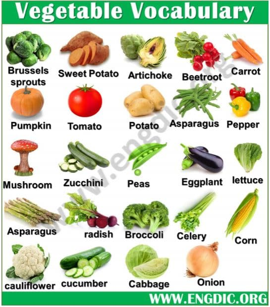vegetable vocabulary