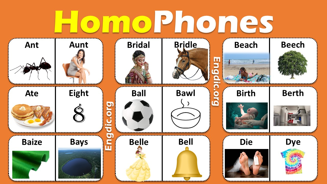Homophones List in English A to Z PDF
