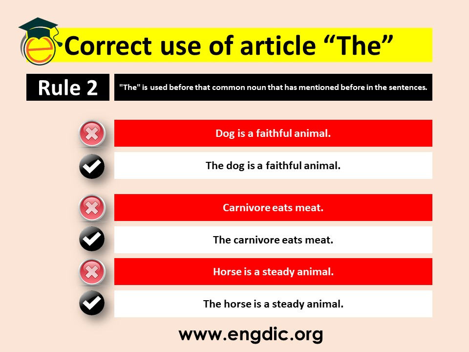 correct use of article the in grammar
