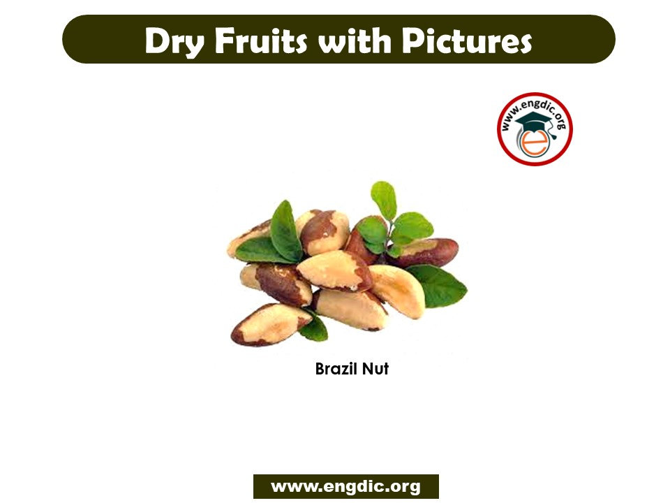 list of dry fruits