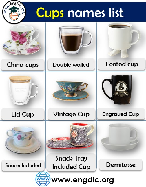 cups vocabulary in english