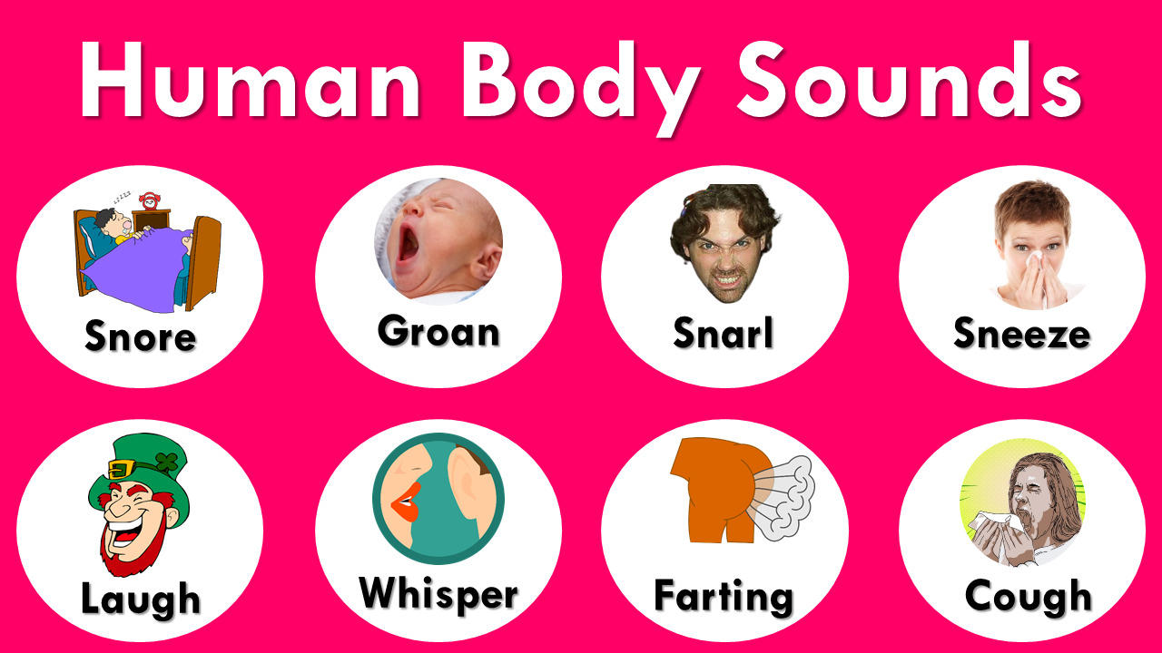 Human Body Sounds with Pictures