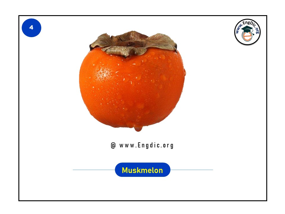 list of tropical fruits in english with pictures and pdf - image 4