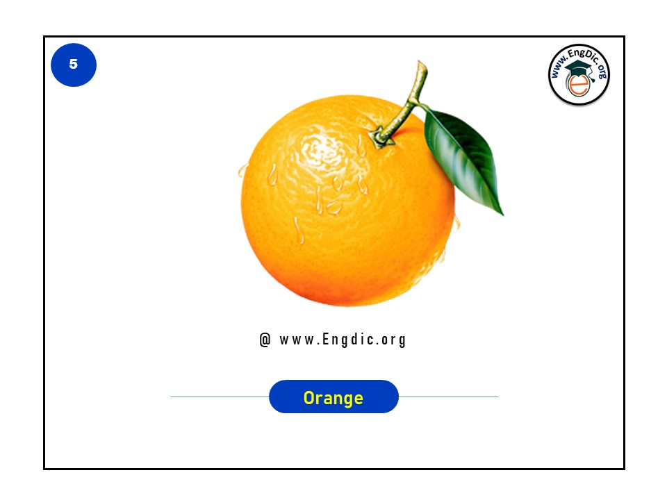 list of tropical fruits in english with pictures and pdf - image 5