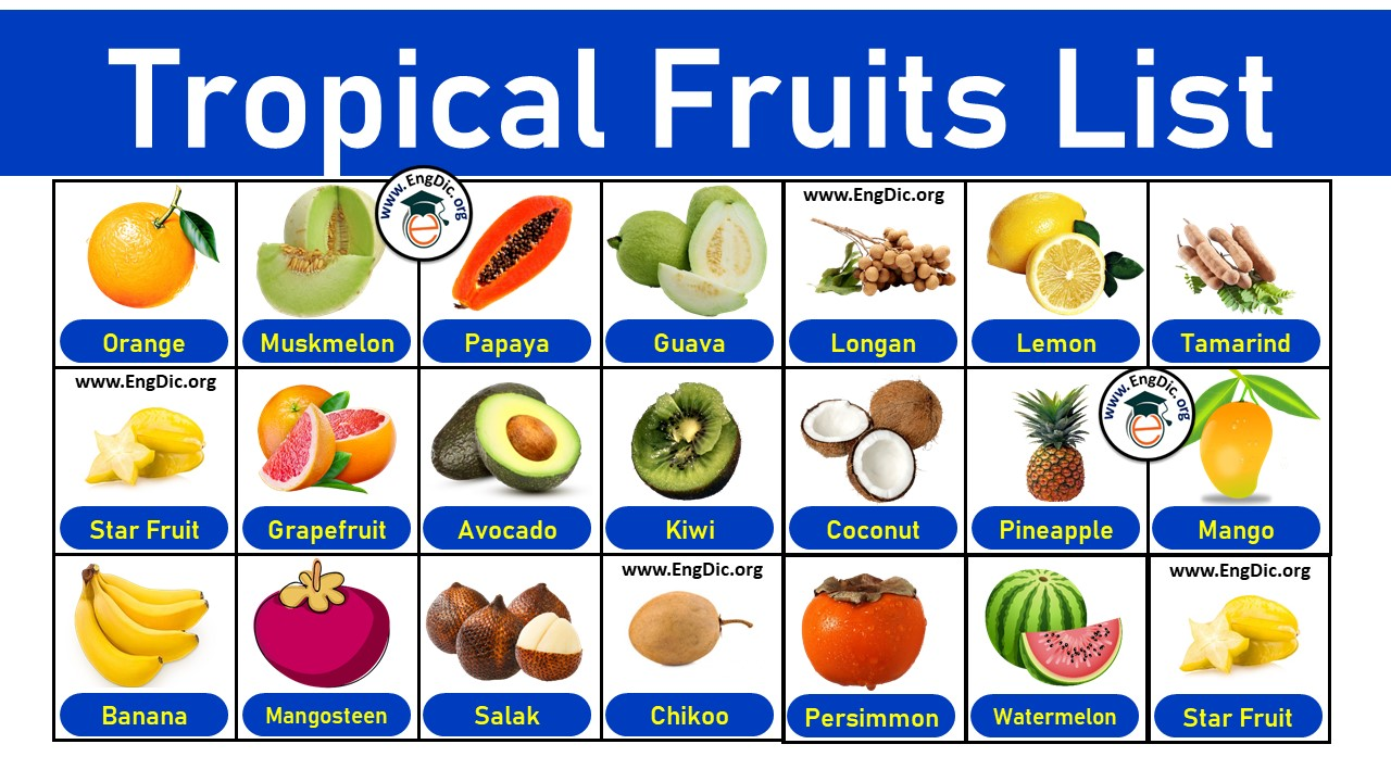 list of tropical fruits